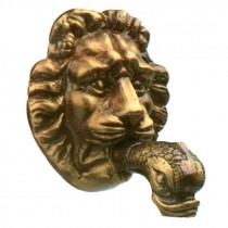 Rosace lion
